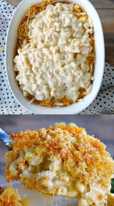 The BEST Homemade Mac and Cheese of your LIFE. Outrageously cheesy, ultra creamy, and topped with a crunchy Panko-Parmesan topping, this mac and cheese recipe is most definitely a keeper. I used three I Love Food, Good Food, Yummy Food, Pasta Dishes, Food Dishes, Aperitivos Finger Food, Macaroni Cheese Recipes, Recipe For Macaroni Cheese, Recipes With Macaroni Noodles