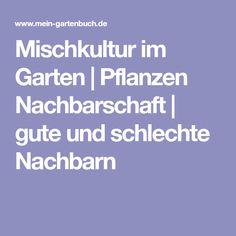 Mischkultur im Garten | Pflanzen Nachbarschaft | gute und schlechte Nachbarn