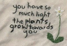 you have so much light the plants grow towards you.