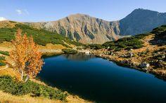 Západní Tatry (Roháče) – klenotem těchto hor jsou ledovcová jezera zvaná Roháčske plesá. Šest nádherných vysokohorských ples leží pod majestátným trojčelím Volovce, Ostrého Roháče a Plačlivého a patří právem knejnavštěvovanějším místům Západních Tater.