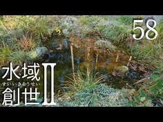 メダカ池、落ち葉掬いの季節 水域創世Ⅱ- 58【4K】 - YouTube Garden Pond, Outdoor Structures, Youtube, Youtubers, Youtube Movies