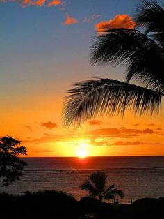 Pictures i want to take while In Maui