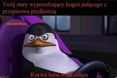 Very Funny Memes, Wtf Funny, Funny Lyrics, Polish Memes, Weekend Humor, D Gray Man, Everything And Nothing, Quality Memes, History Memes
