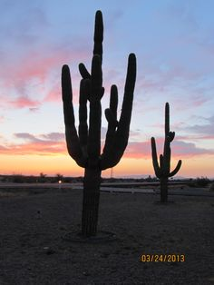 Cactus sunset- for sure--Not Nebraska