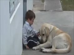 Loving dog takes care of little boy with Down syndrome.
