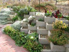 concrete box retaining wall garden. love it.