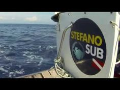 Speciale TG - Stefano Sub Diving - YouTube