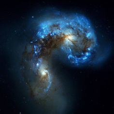 Antennae Galaxies comparison of ALMA and Hubble observations