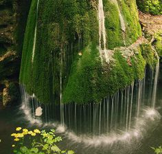 Moss Waterfall in Romania -- that makes another place in Romania that I need to visit.