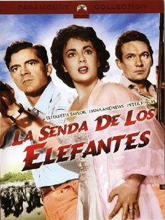 La senda de los elefantes (1954) EEUU. Dir: William Dieterle. Aventuras. Drama. Romance - DVD CINE 901