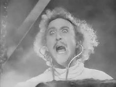 Young Frankenstein. 1974