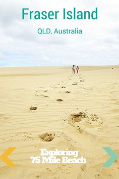 Exploring the Fraser Island attractions along the 75 Mile Beach - Eli Creek, Lake Wabby, Maheno Shipwreck, Indian Heads and Champagne Pools. Read more on wanderluststoryte...