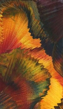 Autumn Foliage - Encaustic Wax Painting - by Anne Berendt. Love this - reminds me of the petals of a pansy! Wax Art, Encaustic Art, Hospitality Design, Art Plastique, Pansies, Painting Techniques, Art Forms, Art Photography, Canvases