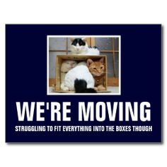 Funny 'we're moving' post cards for cat lovers Moving Humor, Moving House Quotes, Moving Memes, Moving Day, Moving Tips, Memes Box, Fun Moves, Moving Announcements, Mom Cards