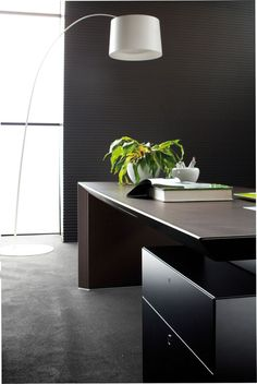 contemporary ceo office furniture | modern contemporary CEO office desk design