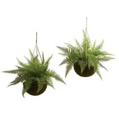 Nearly Natural Indoor/Outdoor Leather Fern with Mossy Hanging Basket (Set of 2) 6743-S2 at The Home Depot - Mobile