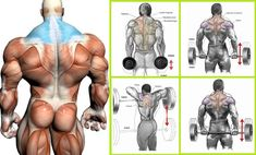 Best Trapezius Exercises to