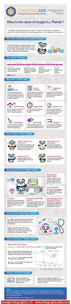 Google Infographics 37 - http://infographicality.com/google-infographics-37/