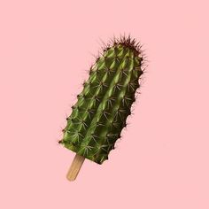 art direction | Cactus Popsicle by artist Francesco Vullo