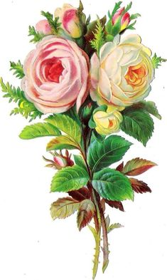 Oblaten Glanzbild scrap die cut chromo Rose 15 cm Blume flower, free vintage printable