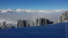 Berner Oberland Sarnen Switzerland, Germany, Europe, Italy, Swings, Salads, Travel, Outdoor, Outdoors