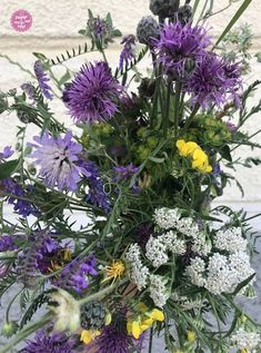 Sommer-Porridge mit Wiesenblumen aus der Stadt - sugar&rose Wicken, Mood Boards, Flowers, Plants, Color, Hemp Seeds, Colour, Plant, Royal Icing Flowers