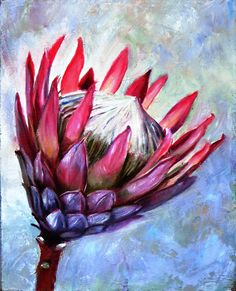 Address in 51 Church Street Protea Art, Protea Flower, South African Artists, Abstract Canvas Art, Abstract Flowers, Watercolor Paintings, Flower Paintings, Watercolour, Flower Art