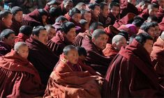 Buddhist monks at a monastery in Xiahe. The gene mutation is an adaptation to low oxygen levels on the Tibetan plateau. Photograph: Mark Ral...