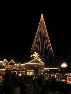Christmas tree?, Gothenburg, Sweden Copyright: Chris Cosher