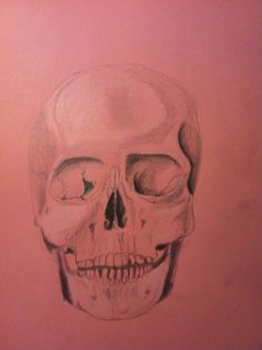 Skull on colred paper