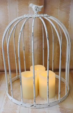 Dome Shaped Metal Bird Cage Cloche For by crystawilliamdesigns Chic Wedding, Wedding Stuff, Dream Wedding, Wedding Ideas, Table Centerpieces, Wedding Centerpieces, Paris Living Rooms, Sunroom Ideas, Metal Birds
