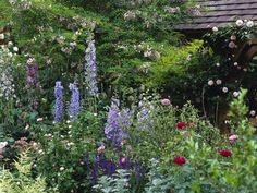 English Style Garden Brimming with Summer Blooms