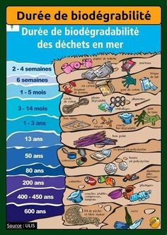 Ecology: duration of biodegradability of waste at sea Source by Ap French, Core French, Learn French, French Teacher, Teaching French, French Education, French Classroom, French Resources, Cycle 3