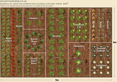 Large Vegetable Garden Layout