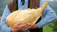 Encuentran un método para crear las verduras gigantescas