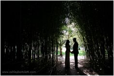 Silhouette Portriat | Grounds For Sculpture wedding | Ashley Bartoletti Photography
