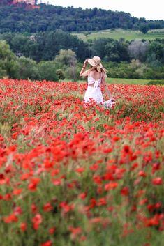 Poppy Photography, Forest Photography, Wild Poppies, Wild Flowers, Shotting Photo, Plant Aesthetic, Grad Pics, Insta Photo Ideas, Felder