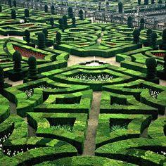 Green Geometrics - Chateau de Villandry Gardens