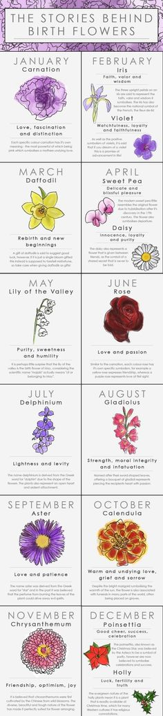I don't believe in zodiac but didn't know there were birth month flowers. Discover the meaning of your 'floral zodiac,' or the bloom associated with the month you were born. It may tell you a lot about your personality. Zealand Tattoo, Flower Meanings, Colour Meanings, Flowers And Their Meanings, Name Meanings, Symbols And Meanings, Birth Flowers, Lily Of The Valley, Aster