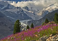 """https://flic.kr/p/x9e2uh 