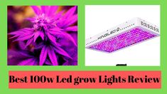 Best Led Grow Lights, Light Board, Daisy Chain, One Light, Hydroponics, Indoor Garden, Save Energy, All The Colors, Hydroponic Gardening