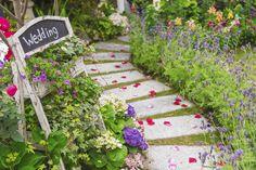 Romantic path to wedding / El camino más romántico hacia la boda #BarceloWeddings #Weddings #Bodas #Barcelo