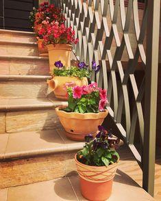 . Primavera. Spring. . . . #pottery #potteryart #potteryhandmade #terracotta #spring #alfareria #alfarero #flowers #flores #primavera #hechoamano #handsmade #escalera Terracotta, Pottery Art, Spring, Flowers, Plants, Handmade, Instagram, Hand Made, Terra Cotta