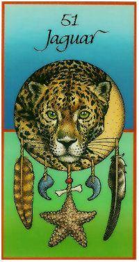 Jaguar Medicine wheel