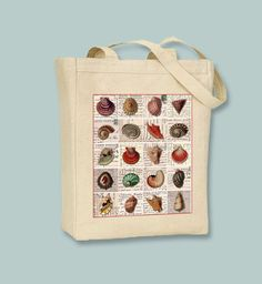 Seashell Collage NATURAL or BLACK Canvas Tote -- Selection of Sizes available by Whimsybags on Etsy