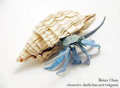 Hermit Crab Origami. Folded by Brian Chan from a square of laminated Japanese mulberry paper.