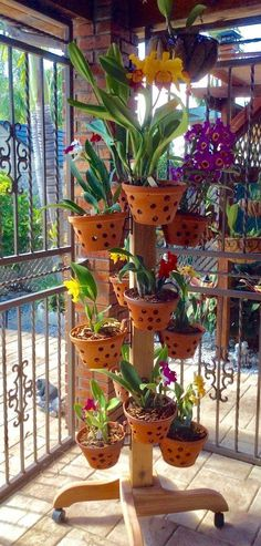 Amazing Ideas For Indoor Herb Gardens Vertical Garden on wheels. Solid cedar plant stand in and heights. 12 or 16 flower pot hangers come with respective poles and legs with wheels. Vertical Garden on wheels. Solid cedar plant stand in and heig