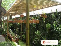 Pergolados em Bambu | Kanela Bambu