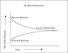 A kémiai egyensúly kialakulása