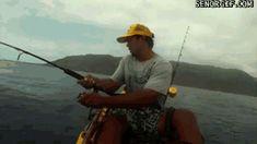 Gruesome Shark Attack | kayak fisherman shark attack - shark gifs